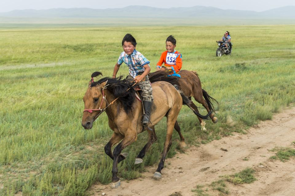 The Mongol Derby – My Wild Life